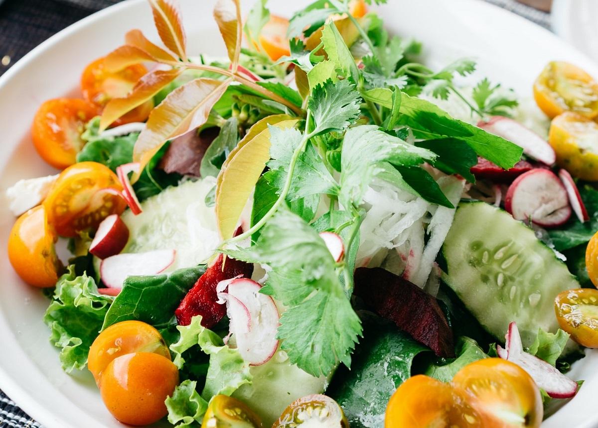 野菜中心の食生活が最も健康に良いのですね。