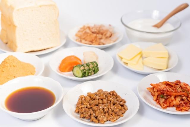 発酵食品を食べると発酵過程で発生した菌が腸内で善玉菌として働き、腸内環境を整えて腸の働きを良くし消化吸収の効率を高めてくれます。