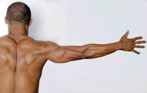 鍛えたい筋肉を使えているのが分かるようになり、筋トレの時の楽しさが大きくなっていました。
