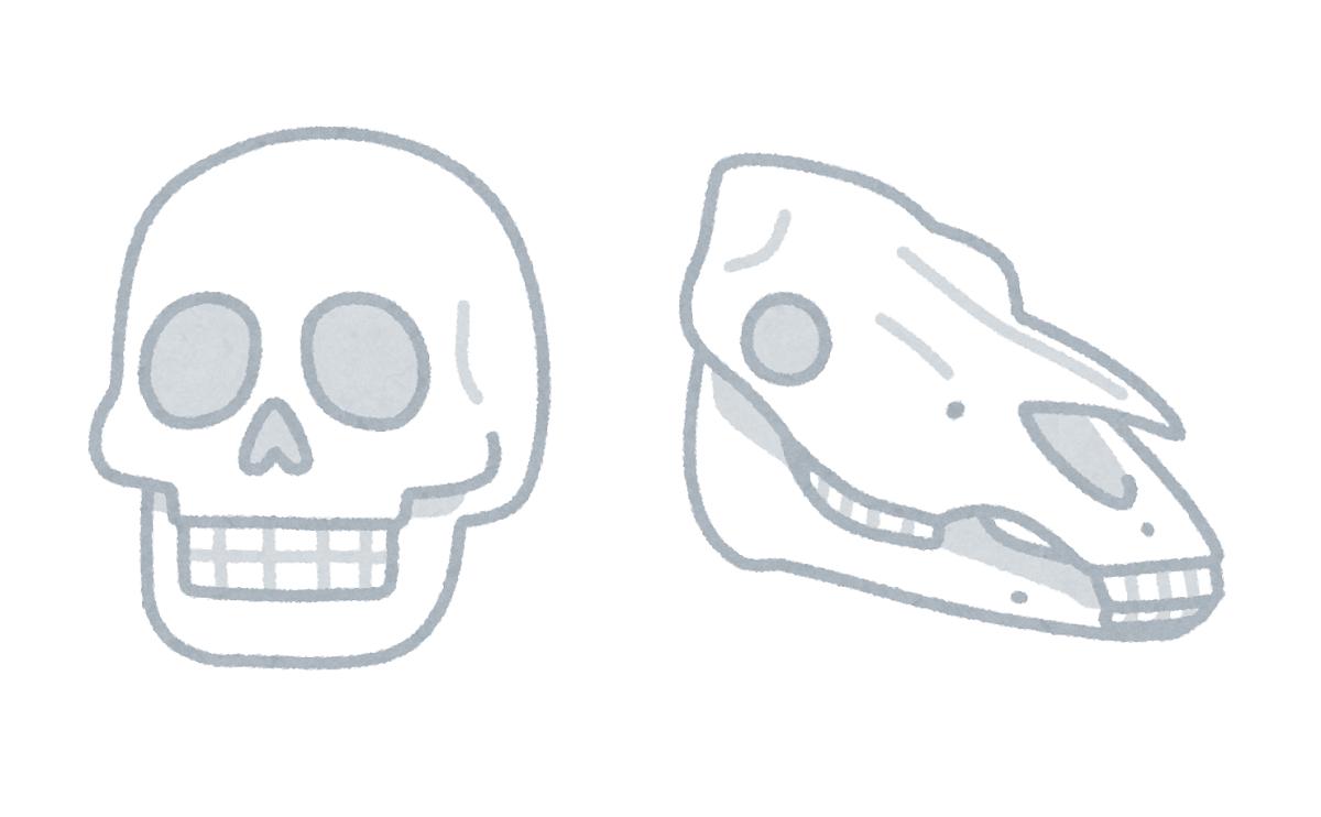 眉上の骨や頬骨などが浮き出てしまうと、顔全体が骨ばった印象になります。