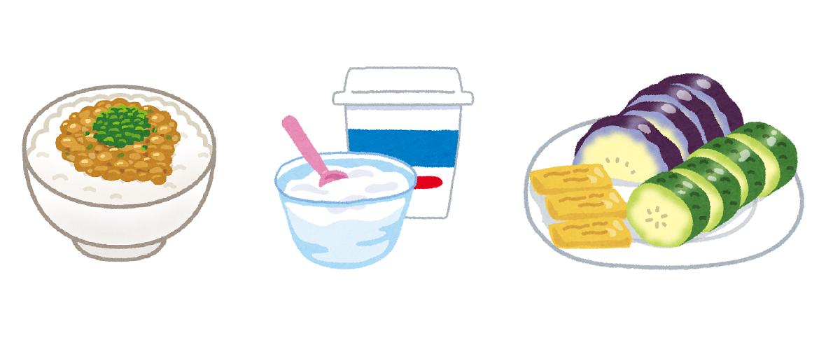 乳酸菌は食べると、人間の消化活動により大半はすぐに死滅しますので、日常の食事から乳酸菌を摂り続ける習慣が必要になります。