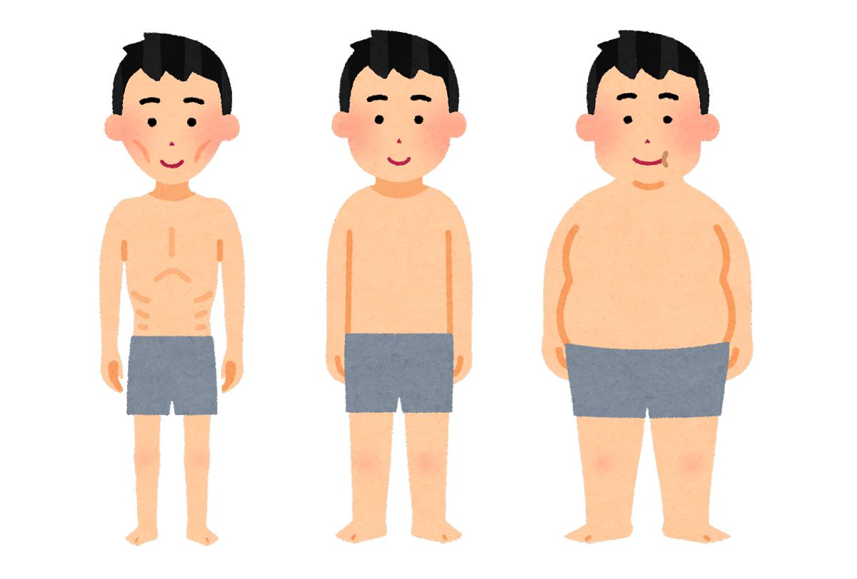 太れない人は基礎代謝量が高いため、太りにくい