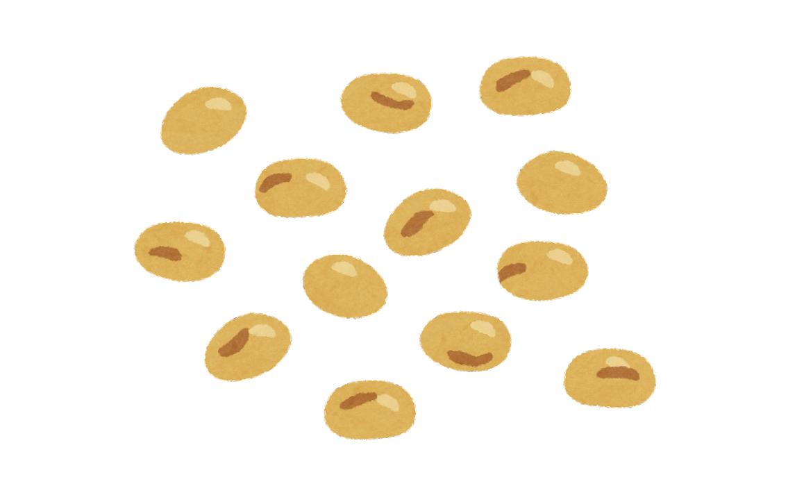 大豆などの豆から作られるプロテイン
